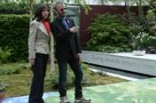 Organicstone - Garden for George Harrison - Chelsea Flower Show 2008 - 2