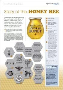 Organicstone Beehive Magazine Page 3