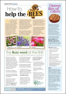 Organicstone Beehive Magazine Page 8